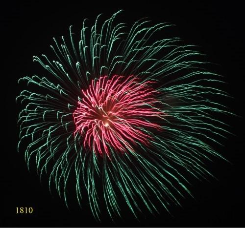 1810.Hoa cúc xanh lục nhụy đỏ Green Peony with red pistil -21chemical