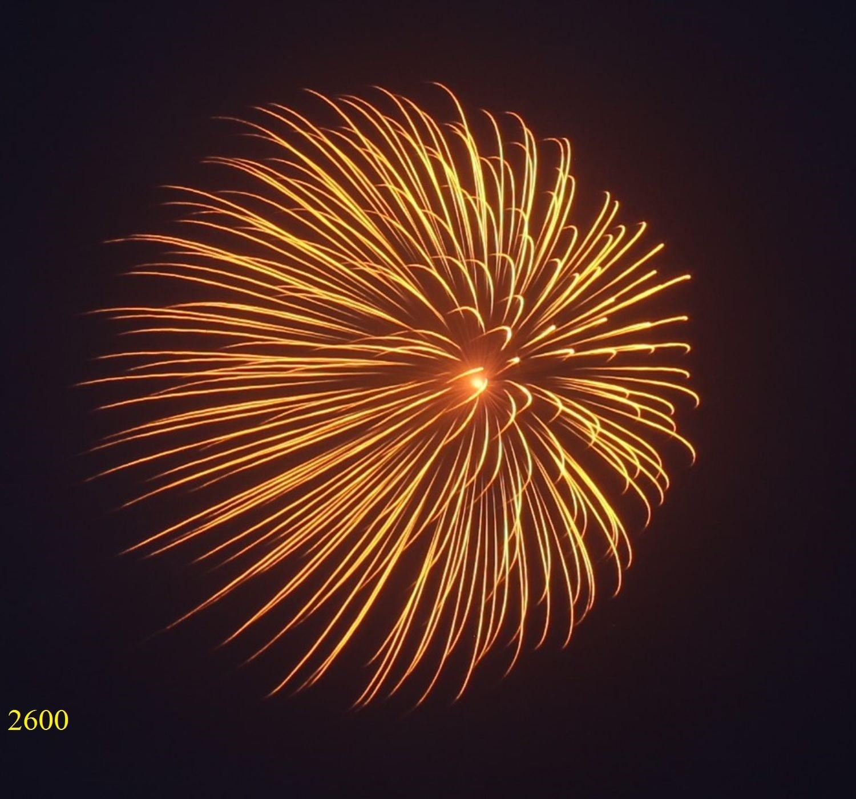 2600. Hoa cúc vàng sẫm nhụy đỏ Brocade chry with red pistil -21chemical