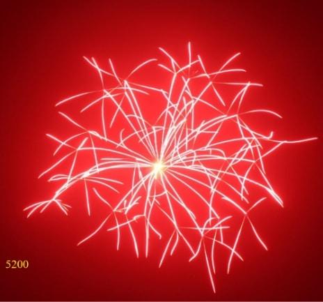 5200.Hoa buông đỏ Red crossett -21chemical