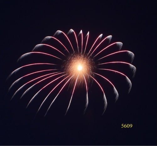 5609. Vòng sao đỏ hành tinh trắng bạc Red circle stars stars with silver pistil -21chemical