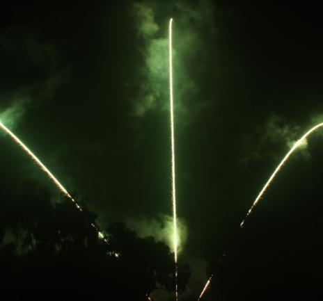 Giàn đuôi hổ Single Tiger Tail Associate Fireworks Set -21chemical