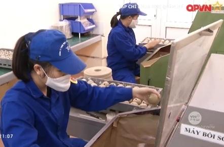 Thăm Nhà máy sản xuất pháo hoa Z121 Bộ Quốc Phòng: Pháo hoa được sản xuất như thế nào?