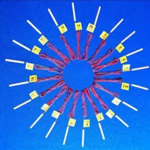 Kíp nổ điện vi sai -21chemical