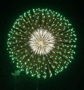 1001. Hoa cúc xanh lục - Green Peony